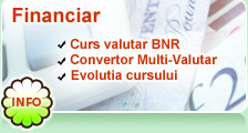 Curs BNR azi Convertor Valutar